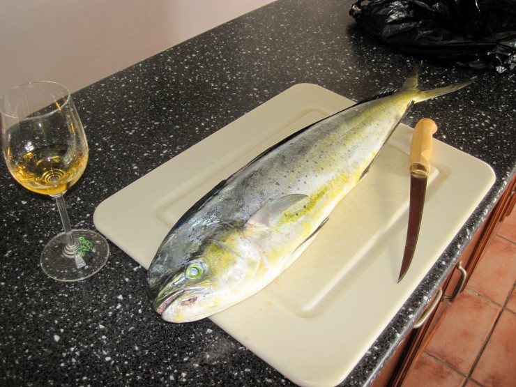 Mahi-Mahi and a nice chardonay from Australia.