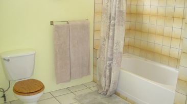 Micro-fiber over-sized bath sheets and a full size tub/shower with spa style shower head.